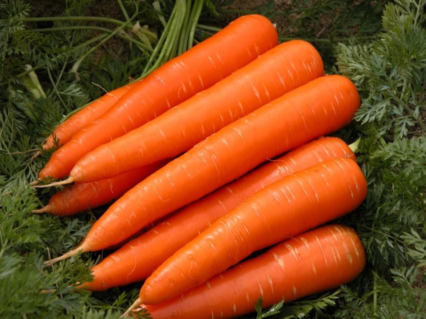 هویج برای داشتن پوست زیبا